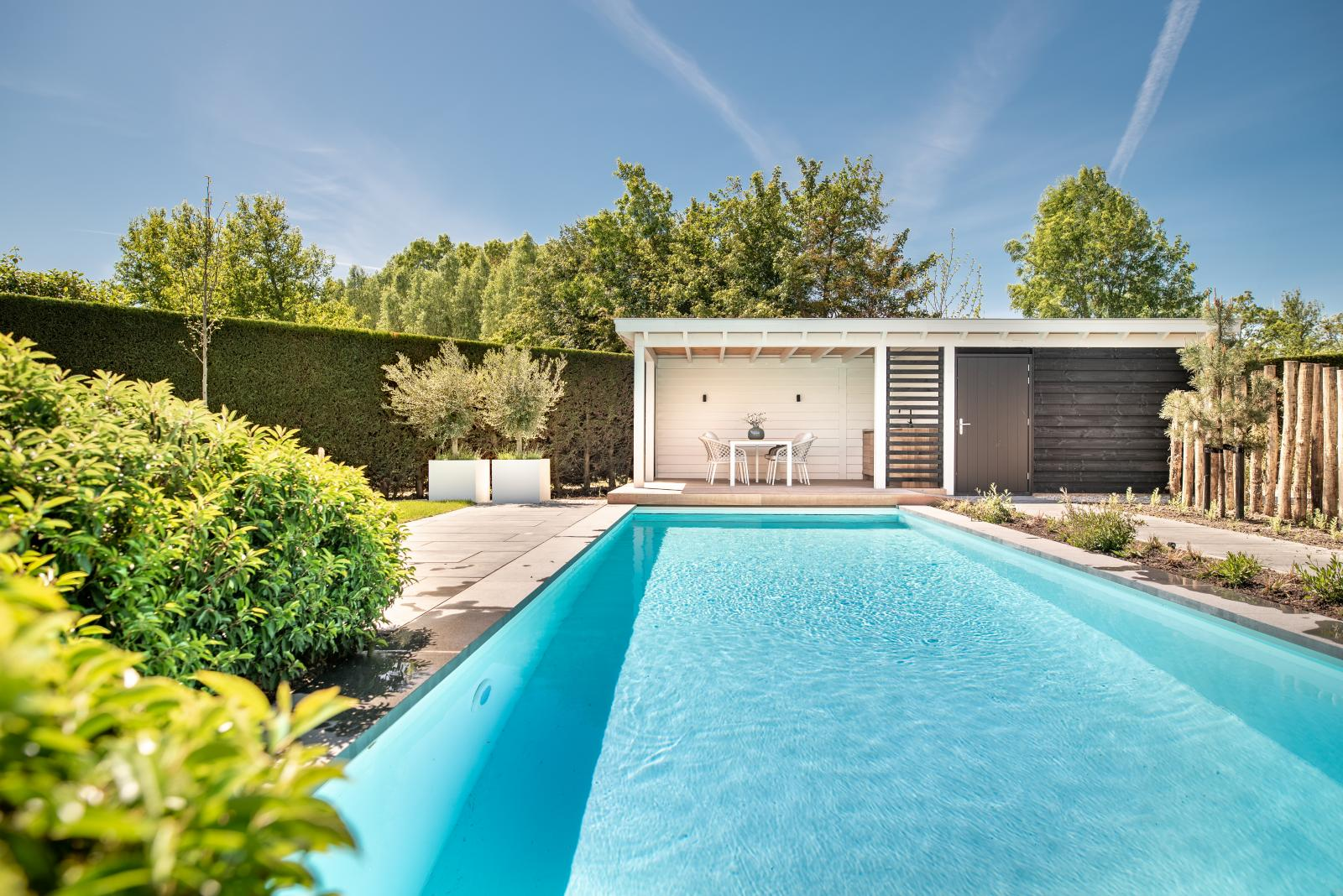Luxe poolhouse te Kamperland 1