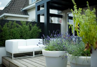 Kleine tuinen de tuin met een oppervlakte van minder dan m